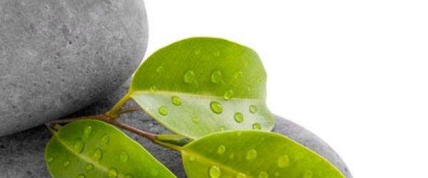 Il Magnesio elemento fondamentale per il benessere