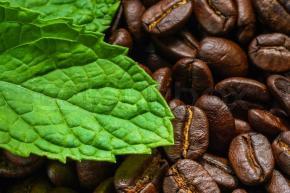 Dr. Organic Coffee