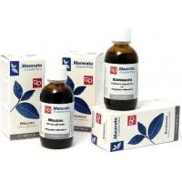TM Quercia marina (Fucus vesiculosus)